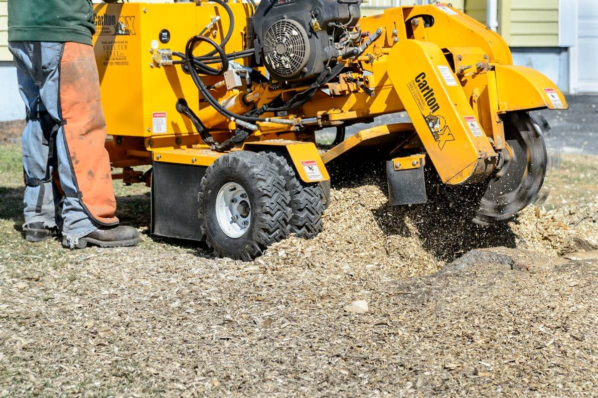 What is the average price of stump grinding